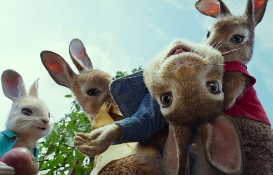 peter rabbit 2 chuan bi khai may